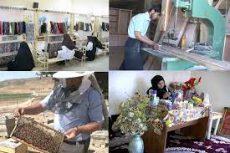 دفاتر تهسیلگری ۳۲۸ شغل در کرمان ایجاد کردند