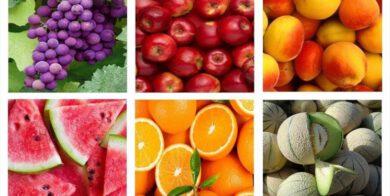 جزئیات طرح اصلاح قانون تضمین خرید خدمات کشاورزی